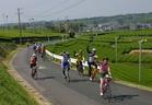 ■静岡県掛川市などで行れた「ゆるゆるガイドライド」の様子。スローライフ・ジャパンの理事・長谷川八重さん(NPO法人スローライフ掛川)からのご提供です。なんとも気持ちのよさそうなサイクリングですね。