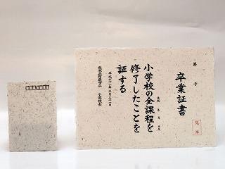 熊本県阿蘇市「手漉き野草紙」