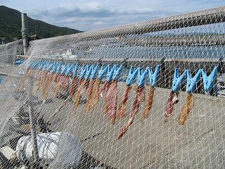 菅島・干し魚